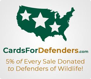 Support Defenders of Wildlife