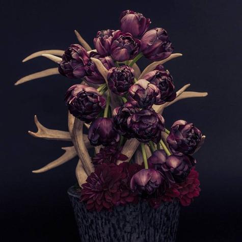 Chicago FloristModernBespokeFloralDesign epoch.floral01