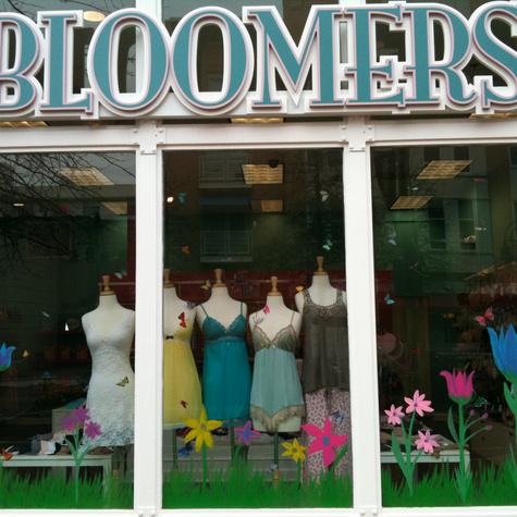 DC WomensClothingLoungewearUndergarmentBoutique Bloomers05